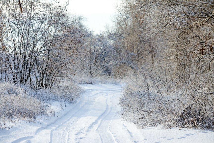 Зима на Хортице: фоторепортаж Алексея Толмачева, фото-8