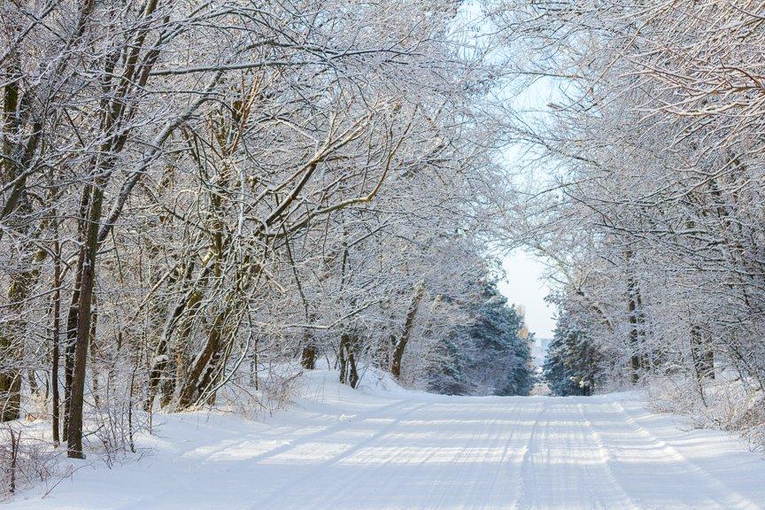 Зима на Хортице: фоторепортаж Алексея Толмачева, фото-5
