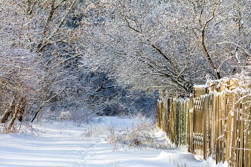 Зима на Хортице: фоторепортаж Алексея Толмачева, фото-14