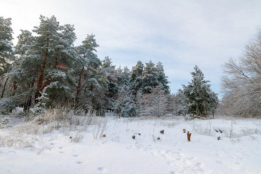 Зима на Хортице: фоторепортаж Алексея Толмачева, фото-10
