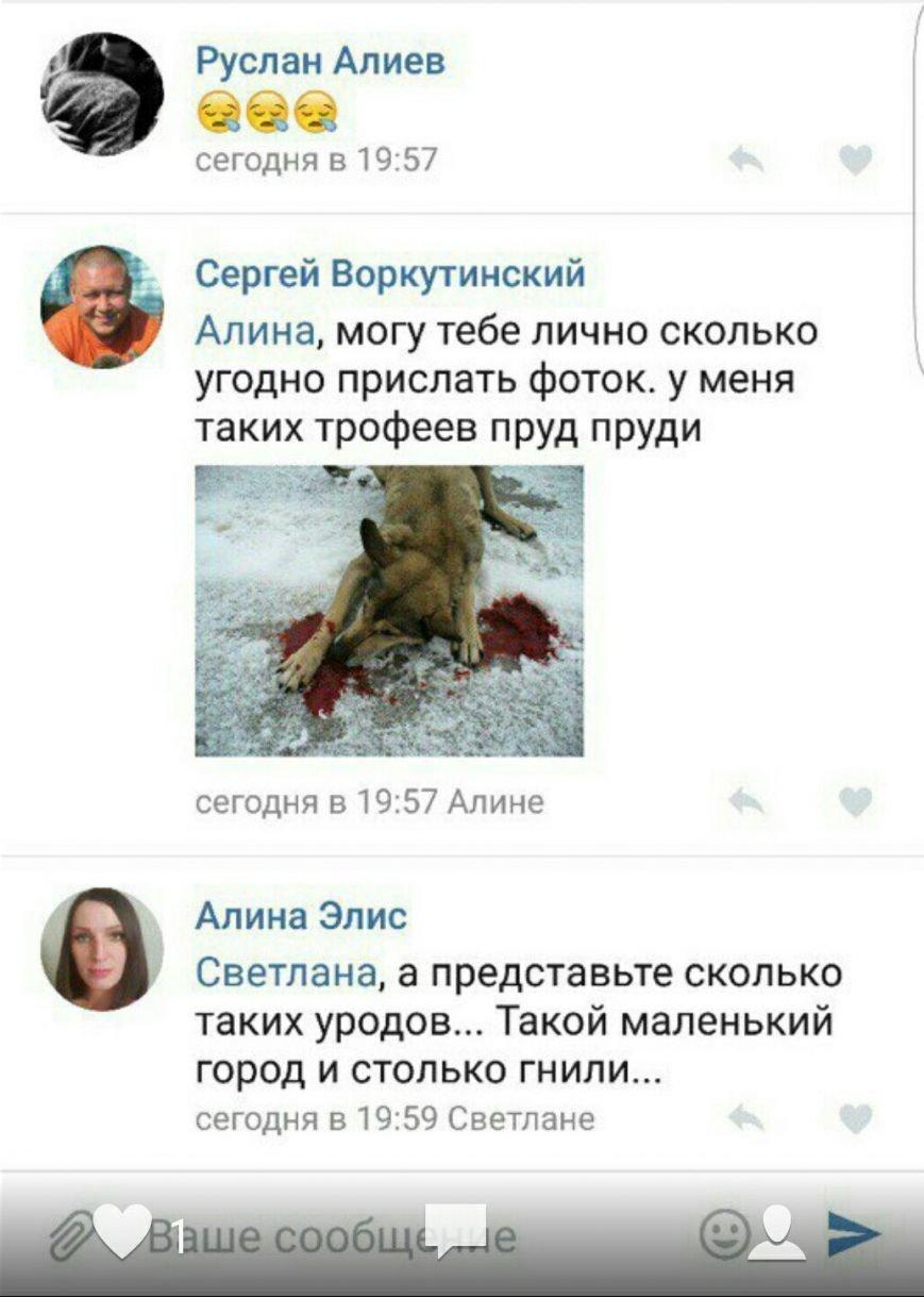 Соцсети: неизвестный стрелял в собаку и скрылся с места, фото-3