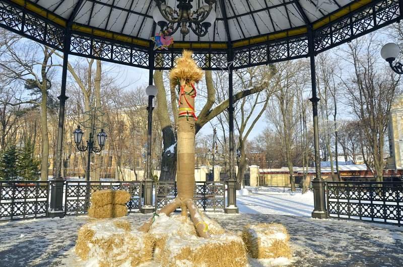 В одесском Горсаду хулиганы разрушили 3-метровый дидух (ФОТО), фото-1