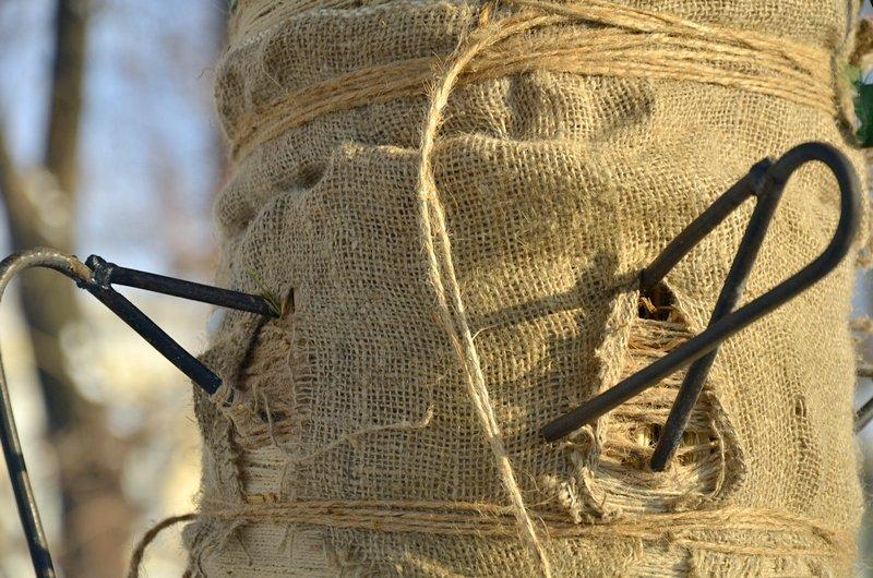 В одесском Горсаду хулиганы разрушили 3-метровый дидух (ФОТО), фото-2
