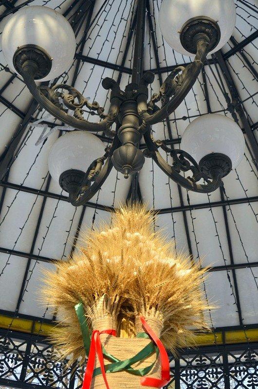 В одесском Горсаду хулиганы разрушили 3-метровый дидух (ФОТО), фото-5