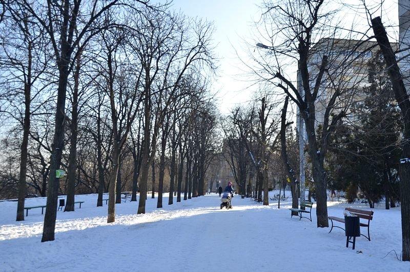 В Одессе не справляются с уборкой снега на улицах (ФОТО, ОПРОС), фото-20