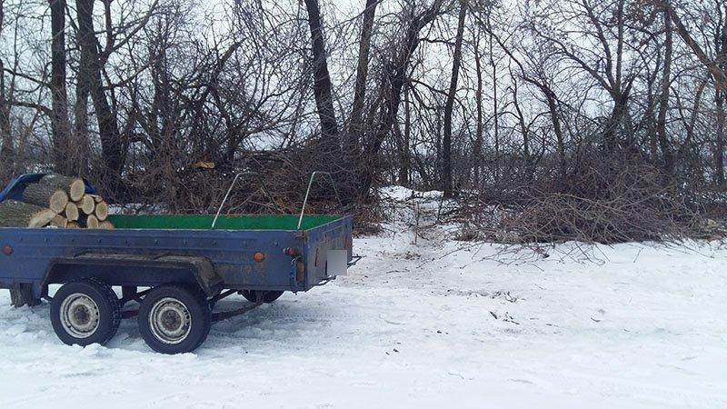 В Бахмутском районе за незаконную вырубку леса задержаны девять человек (ФОТО), фото-5