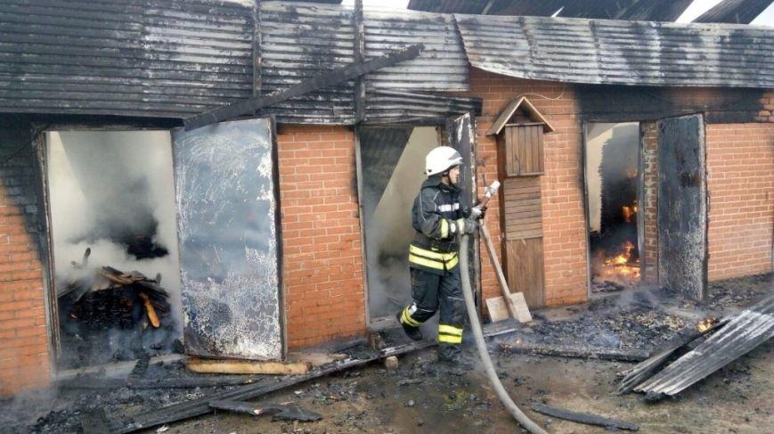 Пожар в Боярке (ФОТО), фото-2