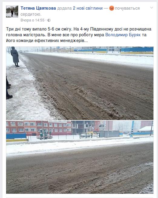Запорожцы жалуются на нерасчищенные дороги, - ФОТО, фото-3
