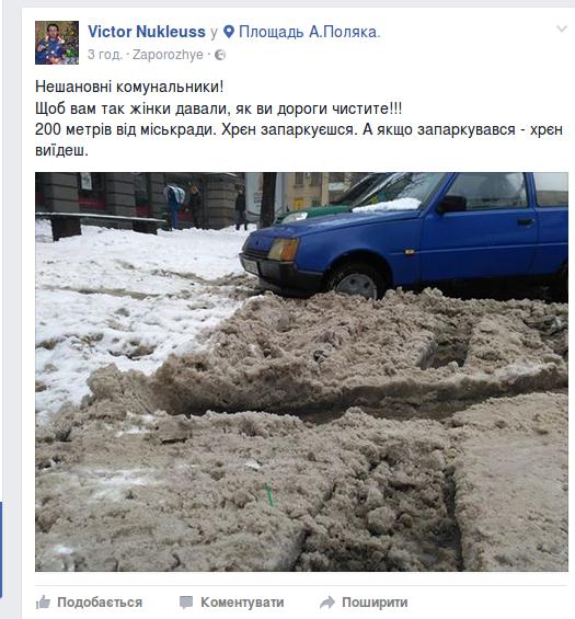Запорожцы жалуются на нерасчищенные дороги, - ФОТО, фото-1