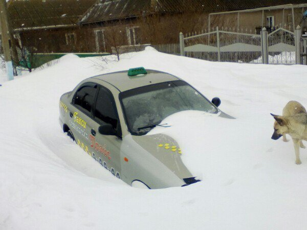 Снежный плен: Самые впечатляющие фото зимы в Одесской области (ФОТО), фото-3