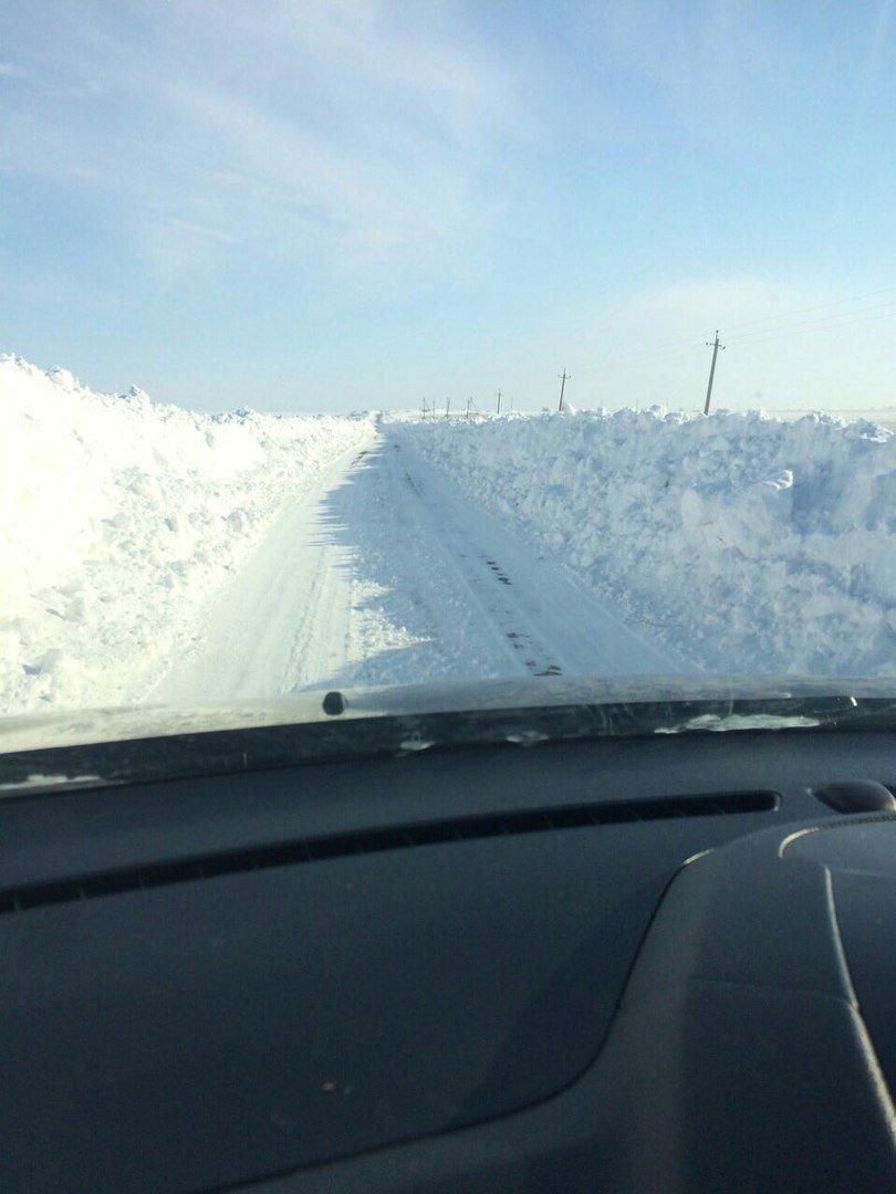 Снежный плен: Самые впечатляющие фото зимы в Одесской области (ФОТО), фото-18