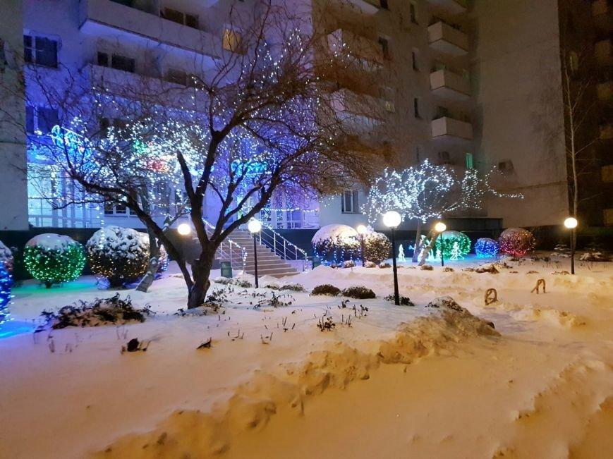 Снежный плен: Самые впечатляющие фото зимы в Одесской области (ФОТО), фото-11