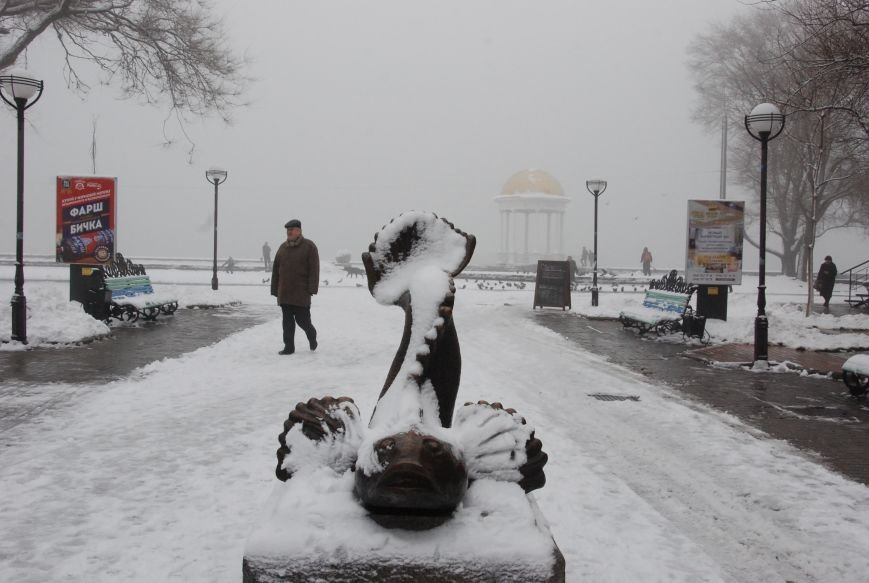 В Бердянске выпал снег (ФОТОРЕПОРТАЖ), фото-9