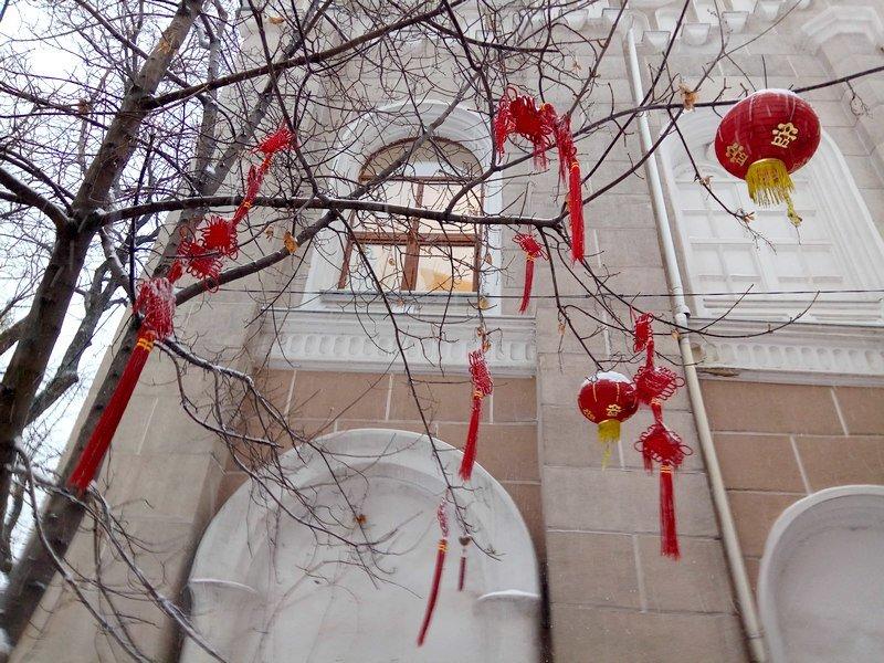 На рассвете Одессу стало заметать снегом сильнее (ФОТО), фото-6