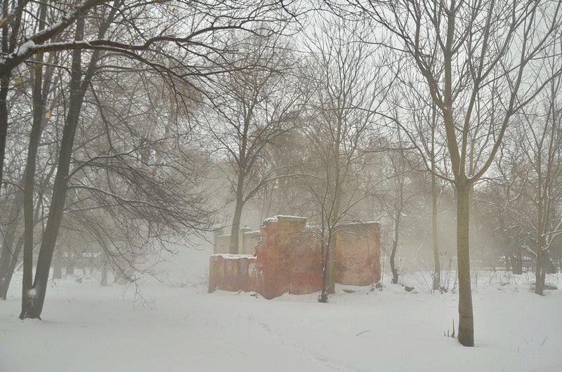В центральном парке Одессы наркоман ловил кайф в кустах (ФОТО), фото-7