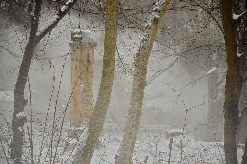 В центральном парке Одессы наркоман ловил кайф в кустах (ФОТО), фото-8
