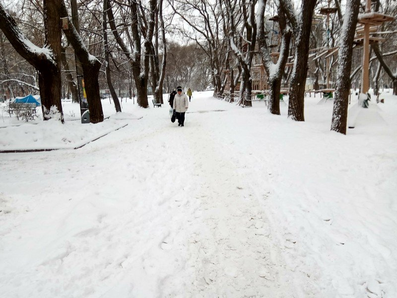 Снег начал таять, Одесса превратится в большой каток (ВИДЕО, ФОТО), фото-3