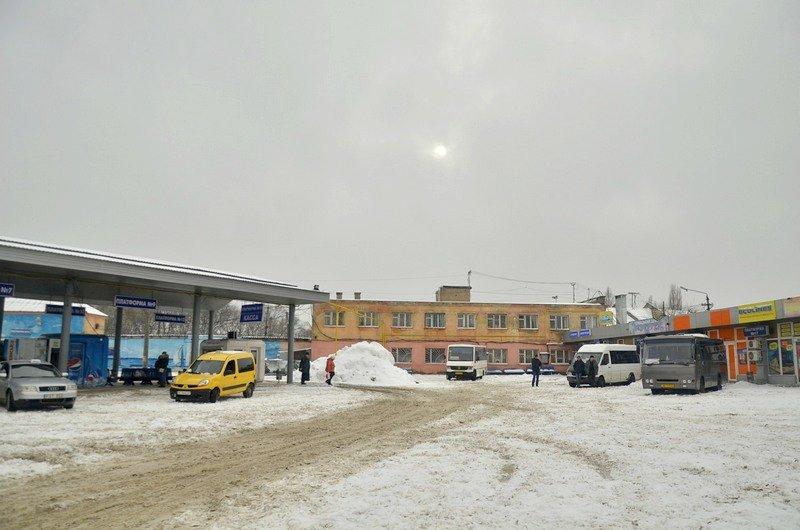 Снег начал таять, Одесса превратится в большой каток (ВИДЕО, ФОТО), фото-34