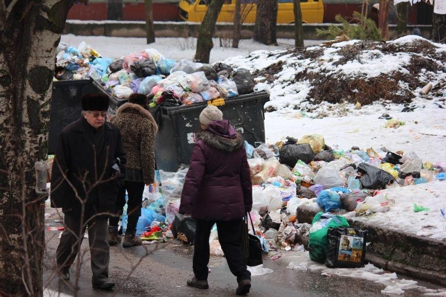 В Запорожье перебои с вывозом мусора, - ФОТОФАКТ, фото-5