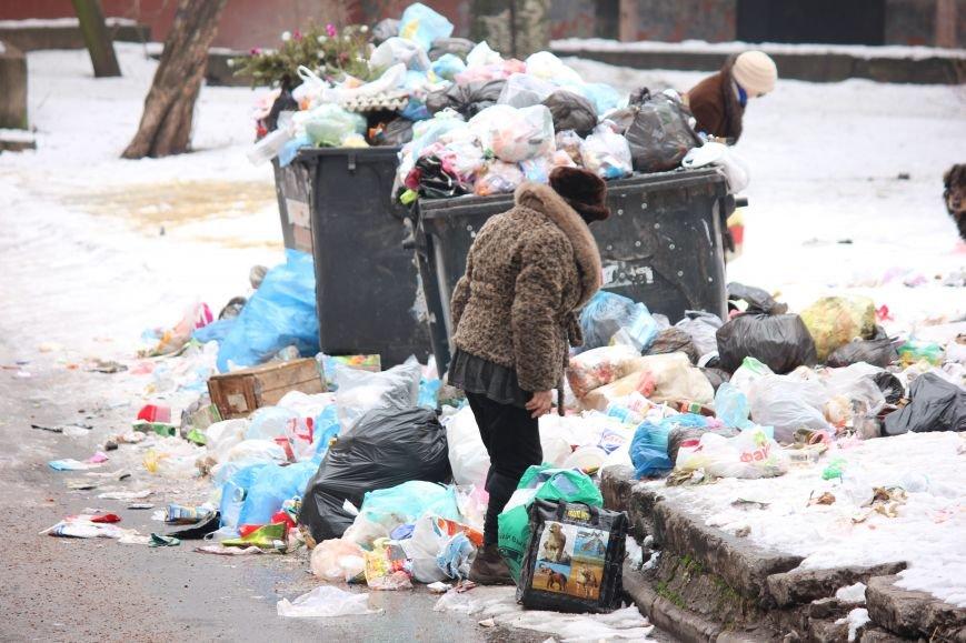 В Запорожье перебои с вывозом мусора, - ФОТОФАКТ, фото-2