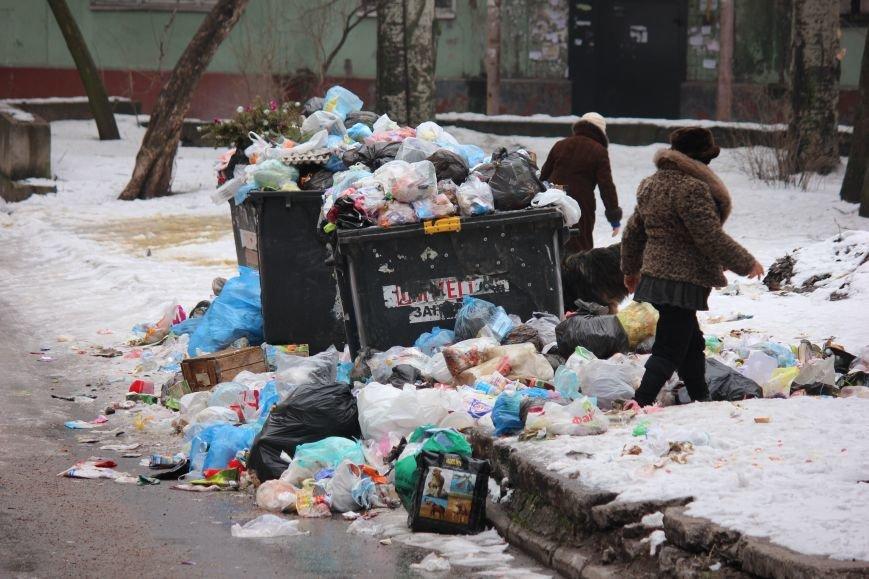 В Запорожье перебои с вывозом мусора, - ФОТОФАКТ, фото-3