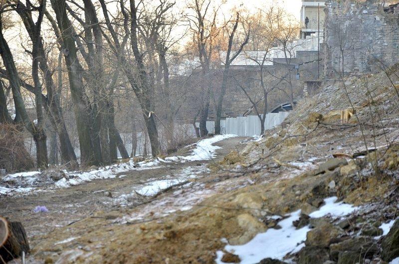 В одесском парке уничтожены десятки деревьев (ФОТО), фото-12