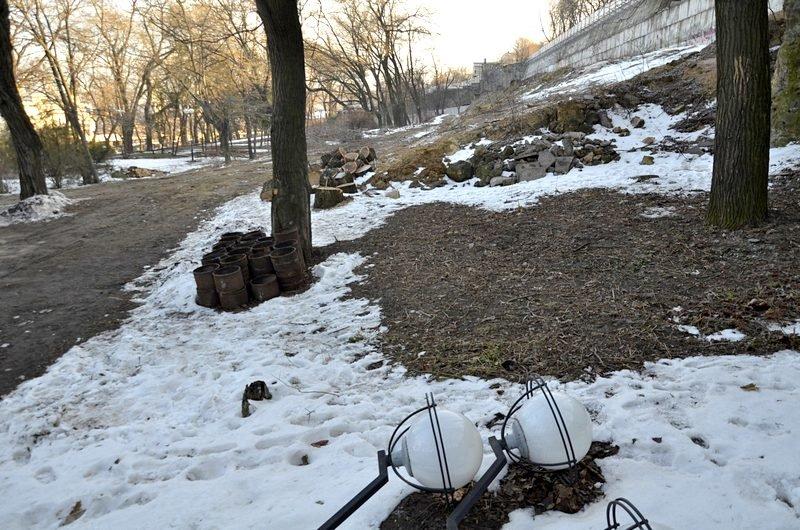 В одесском парке уничтожены десятки деревьев (ФОТО), фото-10