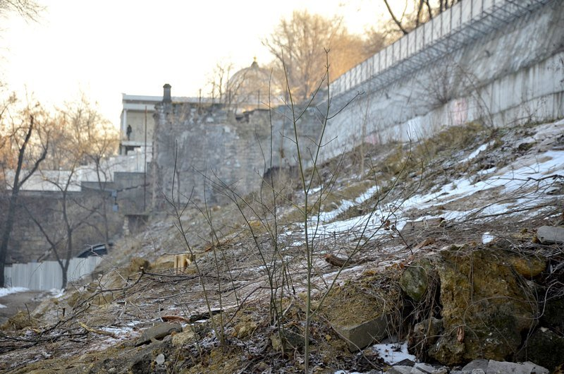 В одесском парке уничтожены десятки деревьев (ФОТО), фото-13