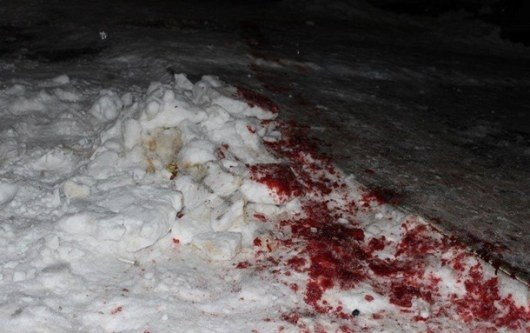 """У Житомирській області через нічну стрілянину оголосили план-перехоплення """"Сирена"""", фото-2"""