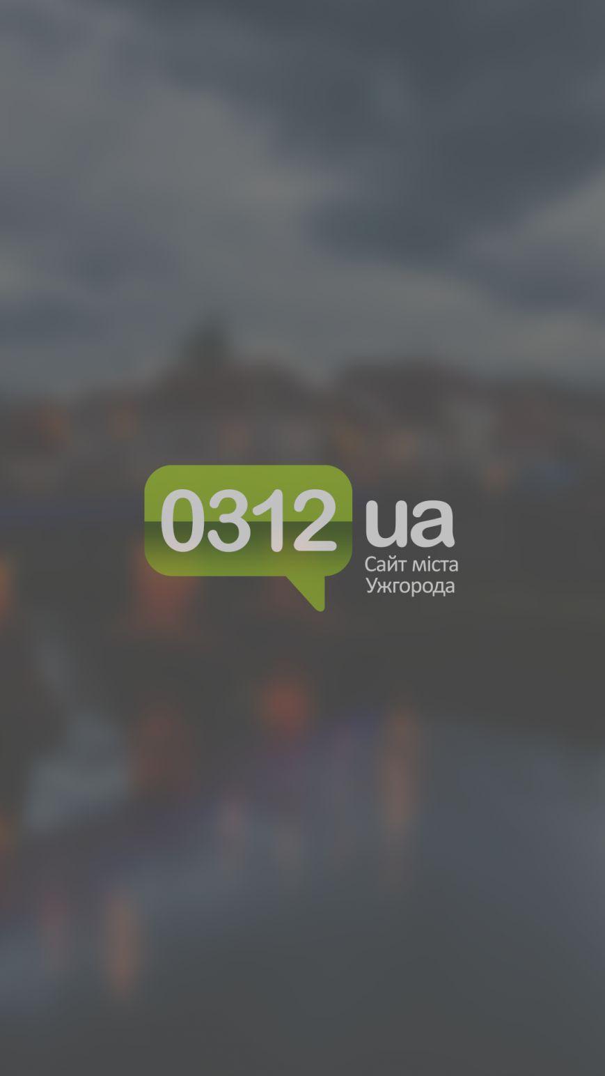 Screenshot_2017-01-23-13-47-23_ua.com.citysites.uzhgorod