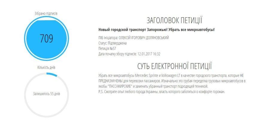 Первая петиция запорожскому горсовету почти достигла успеха: осталось 40 подписей, фото-1