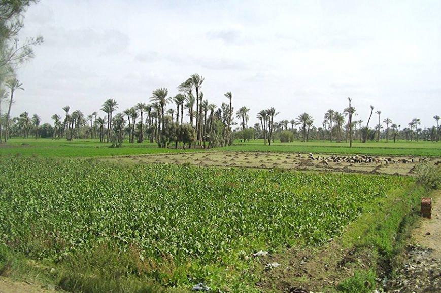 Загадочные места Египта от которых захватывает дух, фото-1