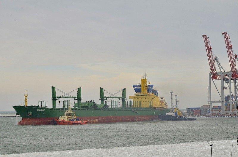 У берегов Одессы море покрылось льдинами (ФОТО), фото-13