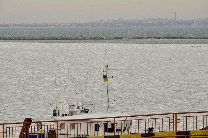 У берегов Одессы море покрылось льдинами (ФОТО), фото-5