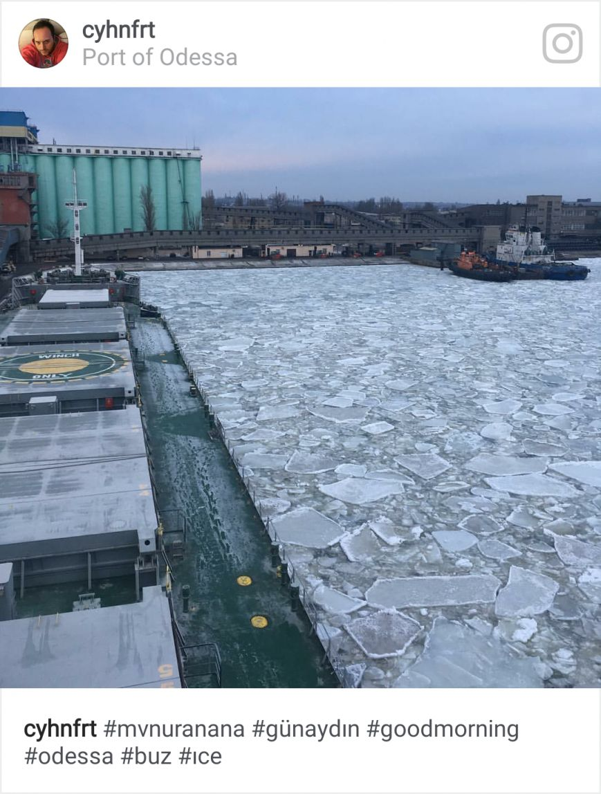 Как соцсети отреагировали на ледяной покров в порту, фото-5