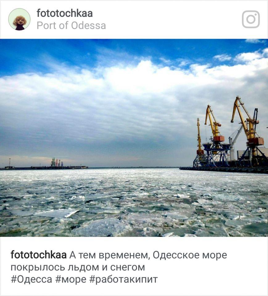Как соцсети отреагировали на ледяной покров в порту, фото-8