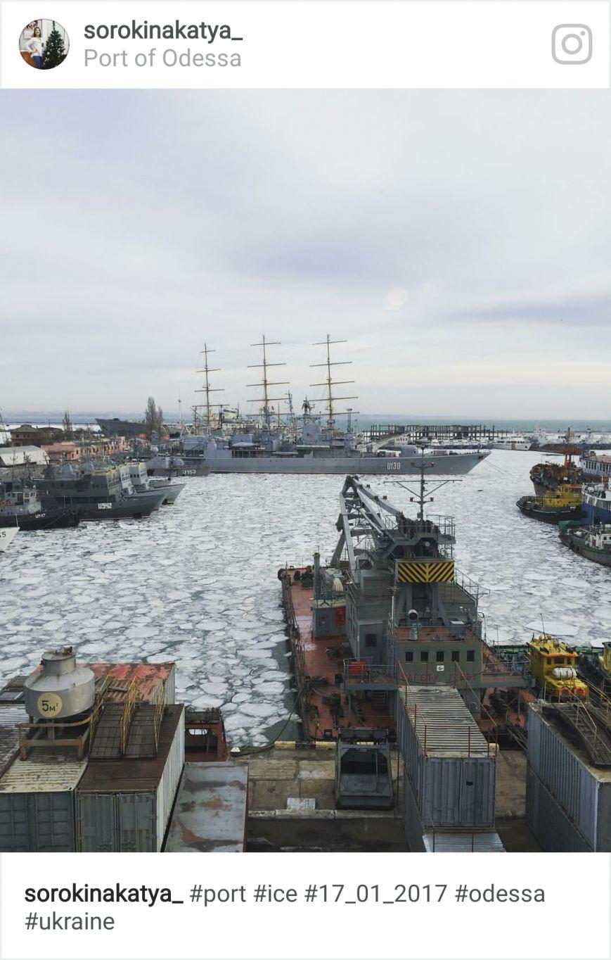 Как соцсети отреагировали на ледяной покров в порту, фото-6
