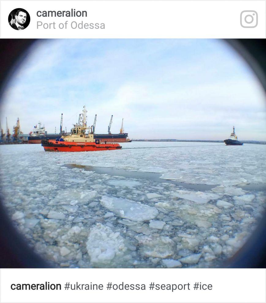 Как соцсети отреагировали на ледяной покров в порту, фото-7