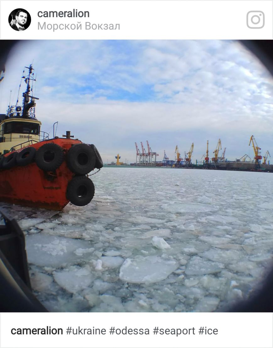 Как соцсети отреагировали на ледяной покров в порту, фото-4