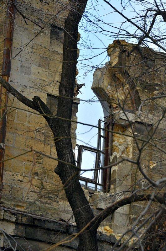 Полная жесть: в Одессе бомж без штанов обокрал Масонский дом (ФОТО), фото-10