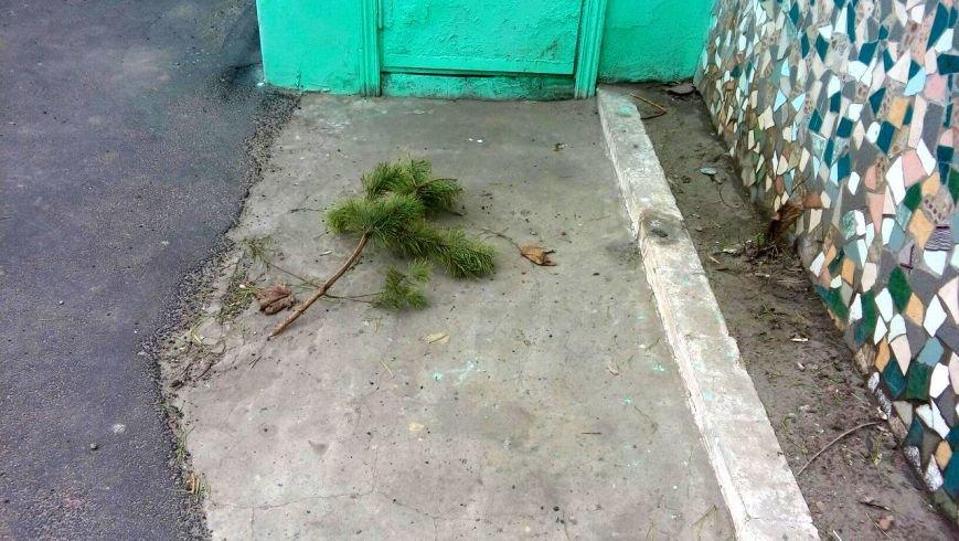 Мариупольцы начали выбрасывать елки во дворы (ФОТО), фото-7