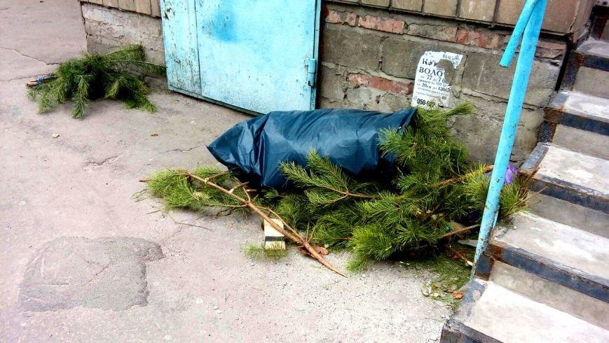 Мариупольцы начали выбрасывать елки во дворы (ФОТО), фото-6