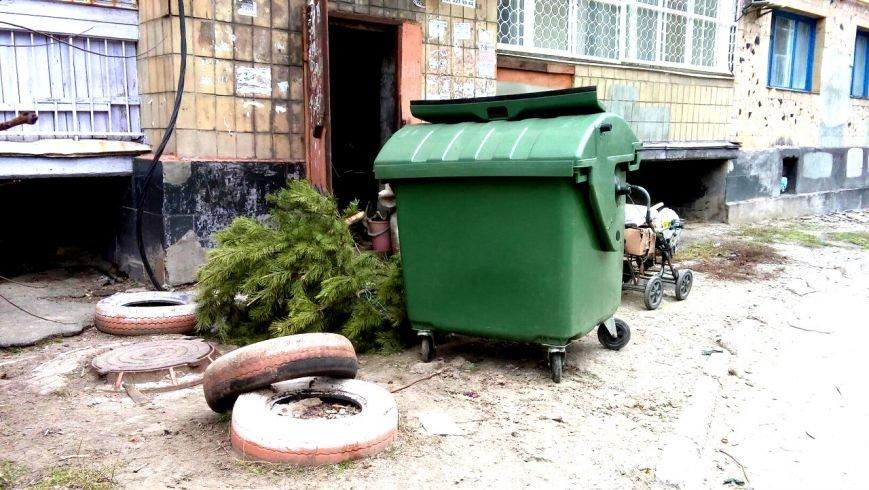 Мариупольцы начали выбрасывать елки во дворы (ФОТО), фото-8