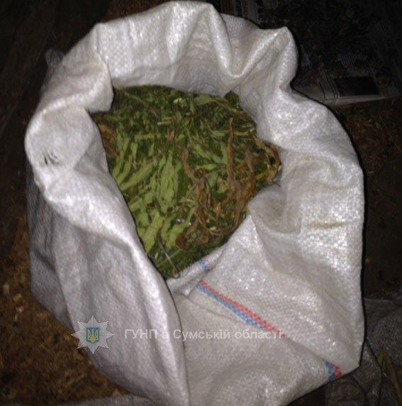 На Сумщине полиция нашла и изъяла партию наркотического сырья на 110 000 гривен (ФОТО), фото-2