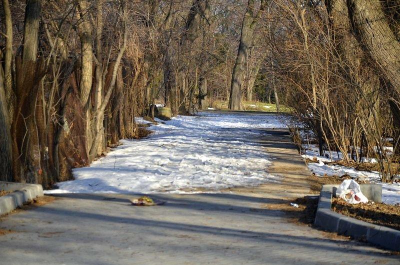 Коммунальщики не расчистили аллеи одесского парка (ФОТО), фото-14