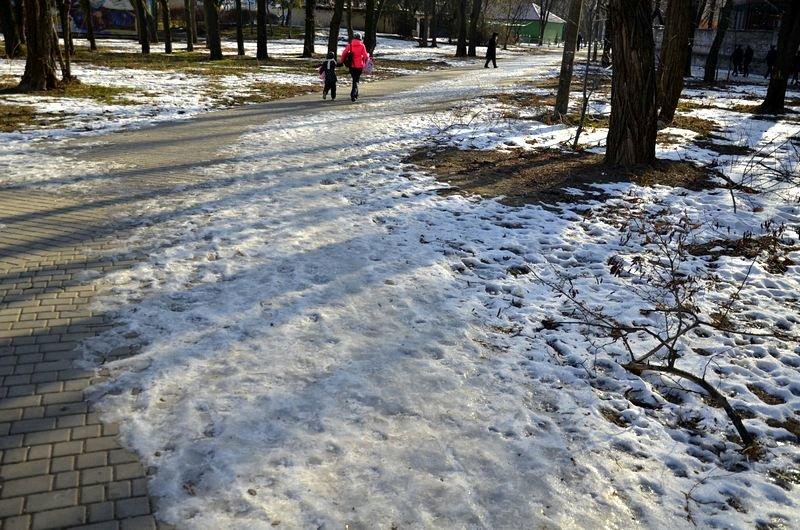 Коммунальщики не расчистили аллеи одесского парка (ФОТО), фото-12