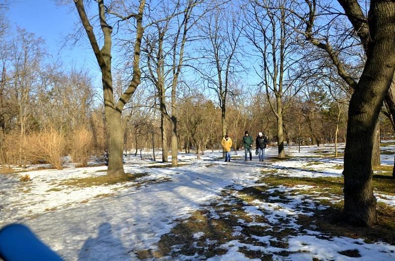 Коммунальщики не расчистили аллеи одесского парка (ФОТО), фото-17