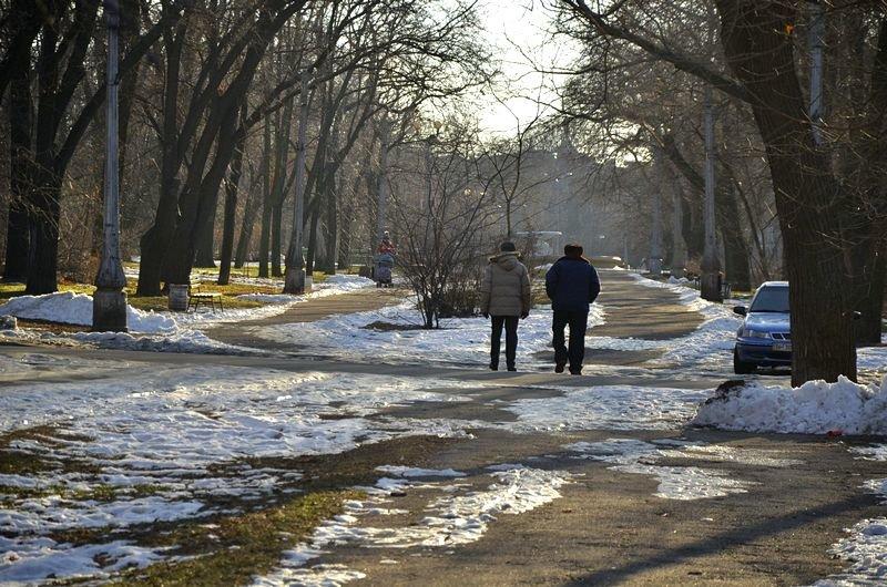 Коммунальщики не расчистили аллеи одесского парка (ФОТО), фото-5