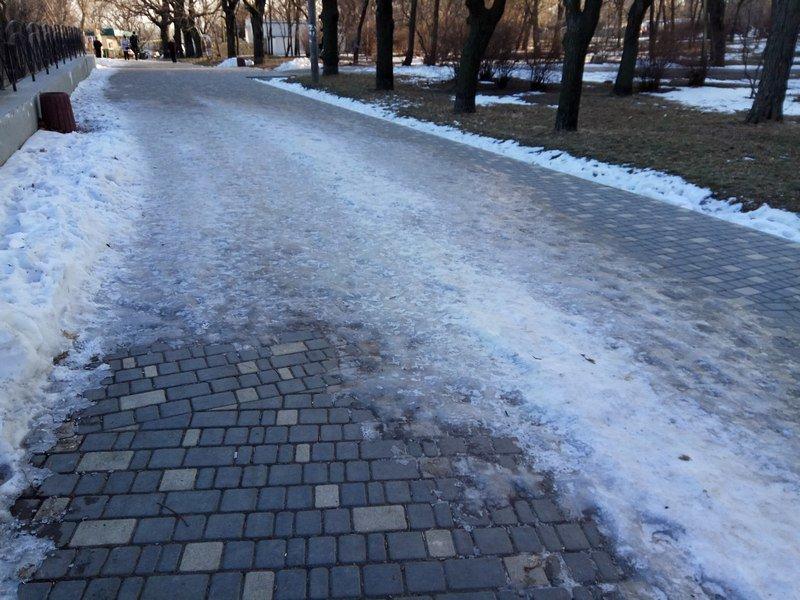 Коммунальщики не расчистили аллеи одесского парка (ФОТО), фото-18