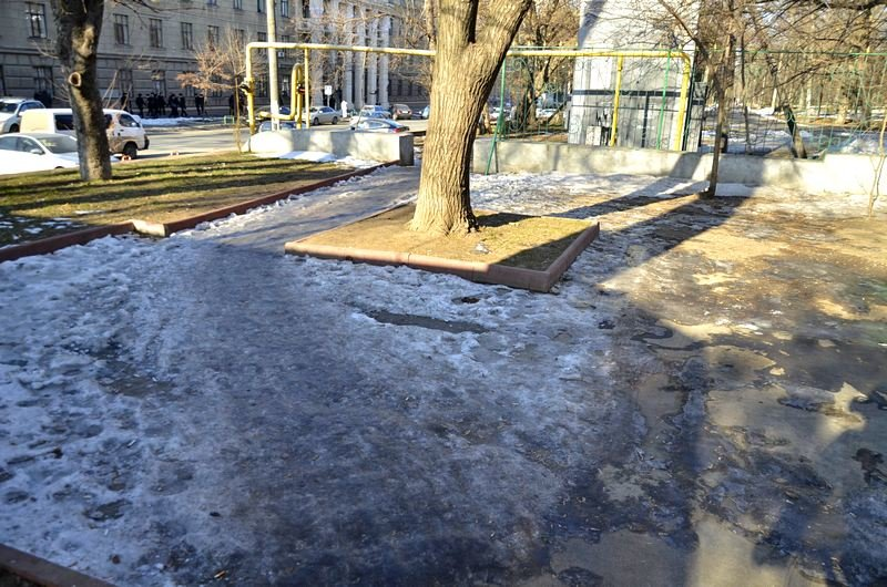 Коммунальщики не расчистили аллеи одесского парка (ФОТО), фото-10